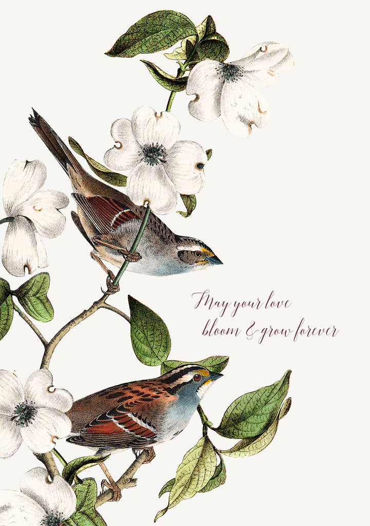 May your love bloom and grow • 5x7 Greeting Card