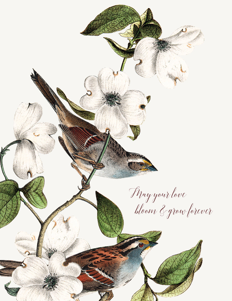 May your love bloom and grow  • A-2 Greeting Card