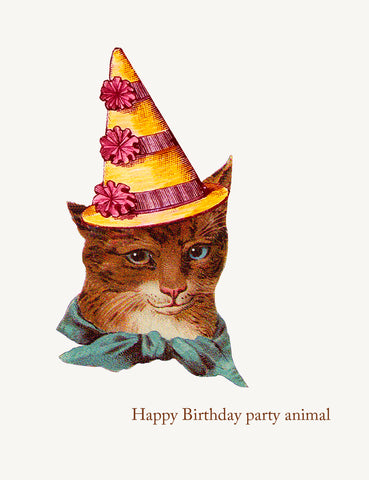Happy Birthday party animal cat • A-2 Greeting Card