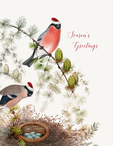 Season's greetings • Holiday Boxed Greeting Cards