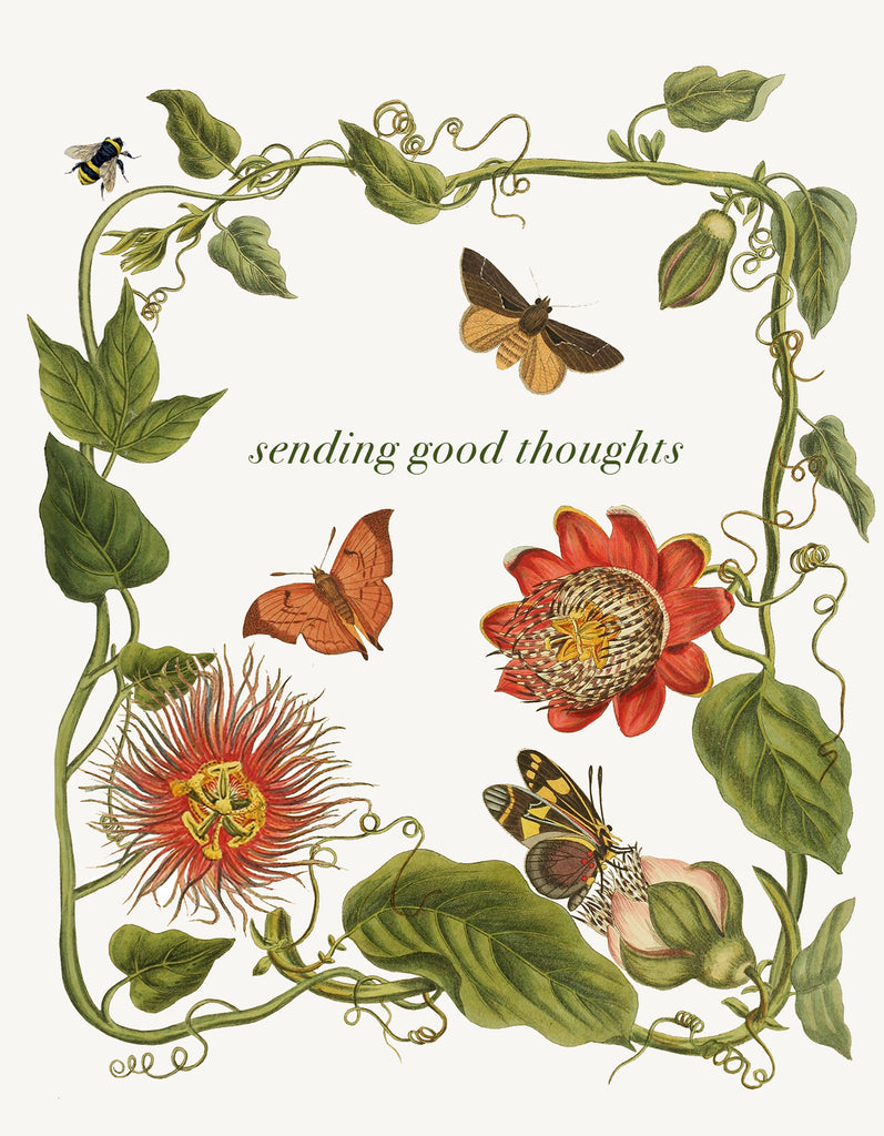 Sending Good Thoughts ( leaves) • A-2 Greeting Card