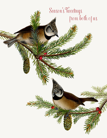 Season's tweetings from both of us • Holiday Boxed Greeting Cards