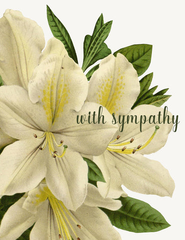 With Sympathy A-2 Greeting Card