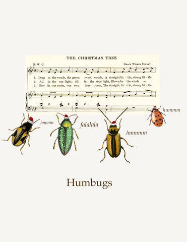 Humbugs • A-2 Holiday Greeting Card