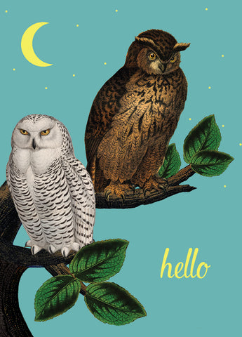 Owls hello• Mini Card