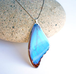 Recycled Butterfly Wing Necklace - Blue Morpho - Butterfly Gift, Nature Theme Jewelry