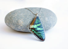 Load image into Gallery viewer, Recycled Butterfly Wing Necklace - Green Sunset Moth - Butterfly Gift, Nature Theme Jewelry