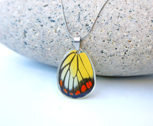 Real Butterfly Wing Necklace - Delias Hyparete