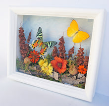 Load image into Gallery viewer, 8x10 Flower Shadow Box with Sunset Moth and Yellow