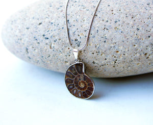 Ammonite Fossil Necklace - Nature Jewelry