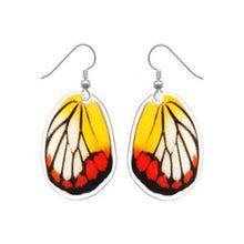 Load image into Gallery viewer, REAL butterfly wing earrings - Delias Hyparete Hindwing