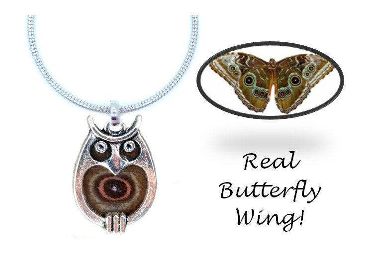 Real Butterfly Wing Owl Necklace