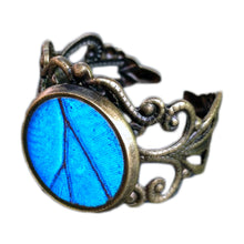 Load image into Gallery viewer, Real Blue Butterfly Wing Ring - Blue Morpho