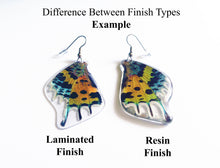 Load image into Gallery viewer, REAL Moth wing earrings - Rainbow Sunset Moth - Butterfly, Moth, Bug, Insect, Curiosity, Recycled, Natural, Rainbow, Colorful