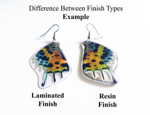 REAL Moth wing earrings - Rainbow Sunset Moth - Butterfly, Moth, Bug, Insect, Curiosity, Recycled, Natural, Rainbow, Colorful