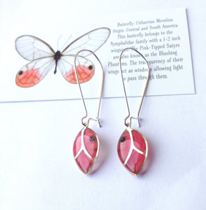 Real butterfly wing leaf earrings - Blushing Phantom