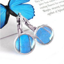 Load image into Gallery viewer, Real Blue Butterfly Wing Post Earrings - Blue Morpho Dropped Post