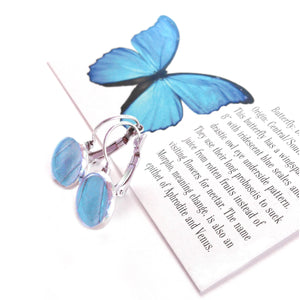 Real Blue Butterfly Wing Post Earrings - Blue Morpho Dropped Post