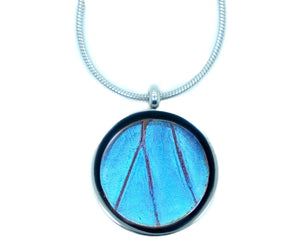 Real Butterfly Wing Necklace Stainless Steel Pendant - Blue Morpho