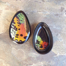 "Load image into Gallery viewer, Real Moth Wing Teardrop Plugs 1/2""-1 1/2""- Rainbow Sunset Moth - Body Jewelry, Gauges, Teardrop Plugs"