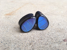 Load image into Gallery viewer, Real Butterfly Wing Teardrop Plugs - Blue Morpho Forewing