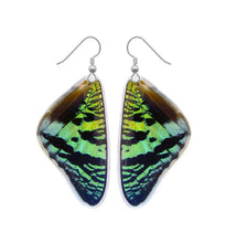 Load image into Gallery viewer, Real Butterfly Wing Earrings - Green Sunset Moth