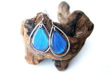 Load image into Gallery viewer, Real Butterfly Wing Sterling Silver Earrings - Blue Morpho Teardrop