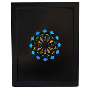 11x14 Real Butterfly Wing Pattern in Kaleidoscope Window -Green, Owl Eye, Blue Morpho in Black