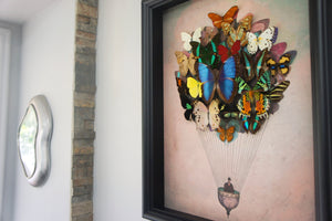 11x14 or 16x20 Real Butterfly Hot Air Balloon Zeppelin Framed Art