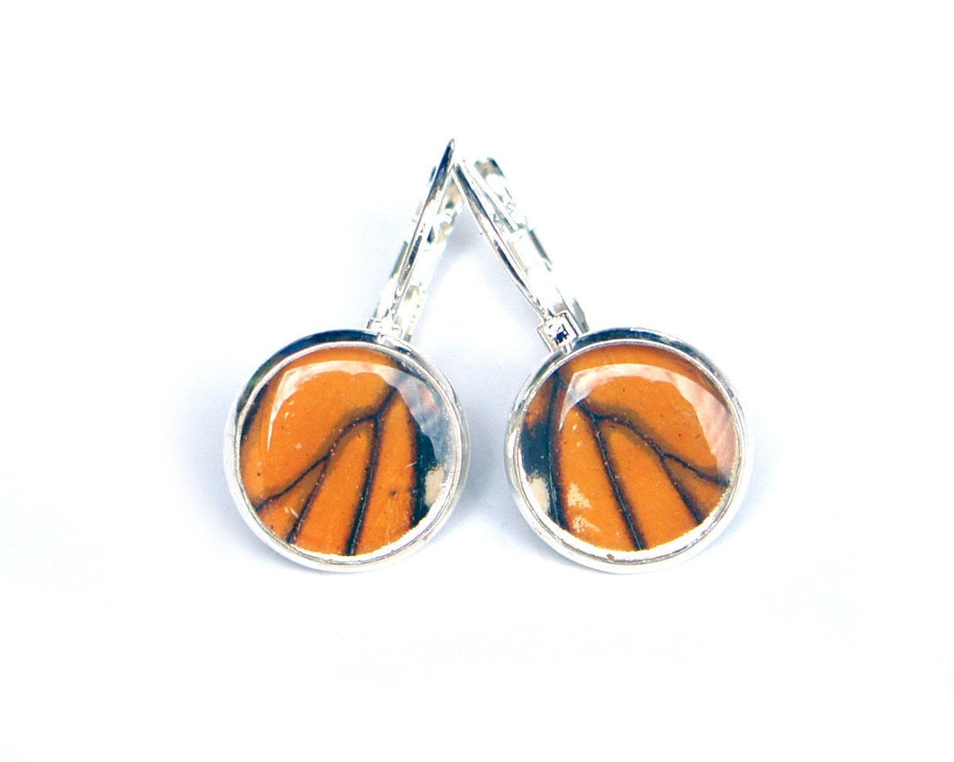 Real Monarch Butterfly Wing Drop Post Earrings - Butterfly Jewelry, Gifts For Her, Butterfly Wings, Small Jewelry