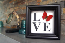 Load image into Gallery viewer, 5x5 LOVE Butterfly Shadowbox Home Decor - Cymothoe Sangaris
