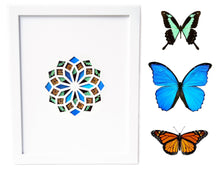 Load image into Gallery viewer, 11x14 Real Butterfly Wing Pattern in Kaleidoscope Window- Phorcas, Morpho, Monarch