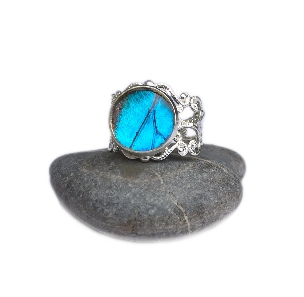 Real Blue Butterfly Wing Ring - Blue Morpho