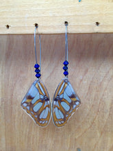 Load image into Gallery viewer, Real Butterfly Wing Earrings - Victorina Stelenes Forewing