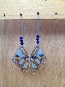 Real Butterfly Wing Earrings - Victorina Stelenes Forewing