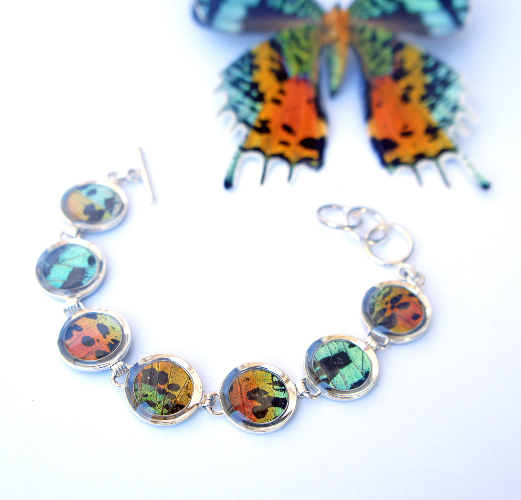 Sunset Moth Butterfly Wing Sterling Silver Bracelet - Adjustable, Accessory, Natural, Colorful, Earth, Rings