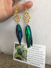 Load image into Gallery viewer, Real Beetle Wing Earrings - Celtic Knot
