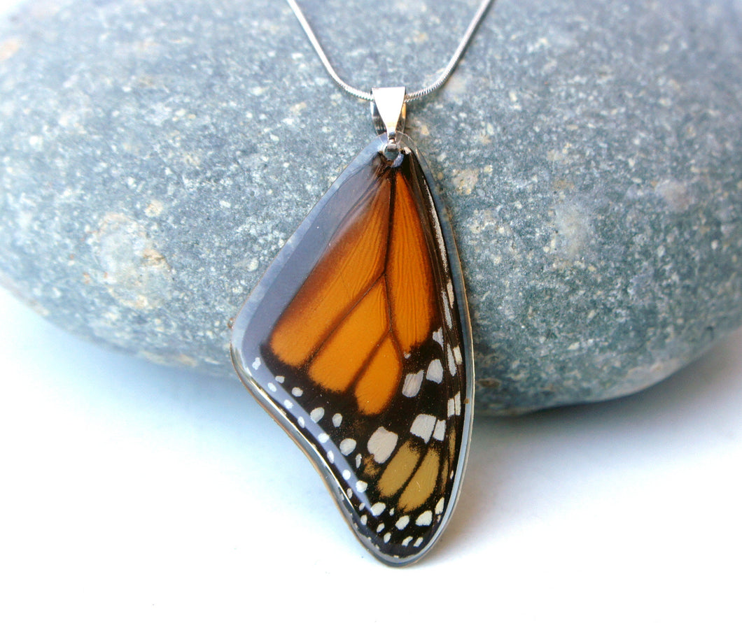 Monarch Butterfly Wing Necklace - Monarch Forewing
