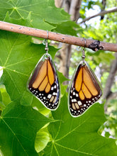 Load image into Gallery viewer, Real Monarch Butterfly Earrings - Monarch Forewing - Butterfly Wings, Butterfly Jewelry, Monarch Jewelry, Gifts For Her