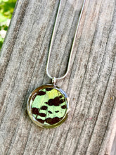 Load image into Gallery viewer, Real Butterfly Necklace Pendant - Green Sunset Moth