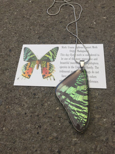 Recycled Butterfly Wing Necklace - Green Sunset Moth - Butterfly Gift, Nature Theme Jewelry