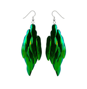 Real Beetle Wing Earrings - Large Fan