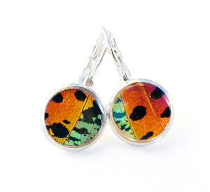 Real Butterfly Wing Dropped Post Earrings - Rainbow Sunset Moth