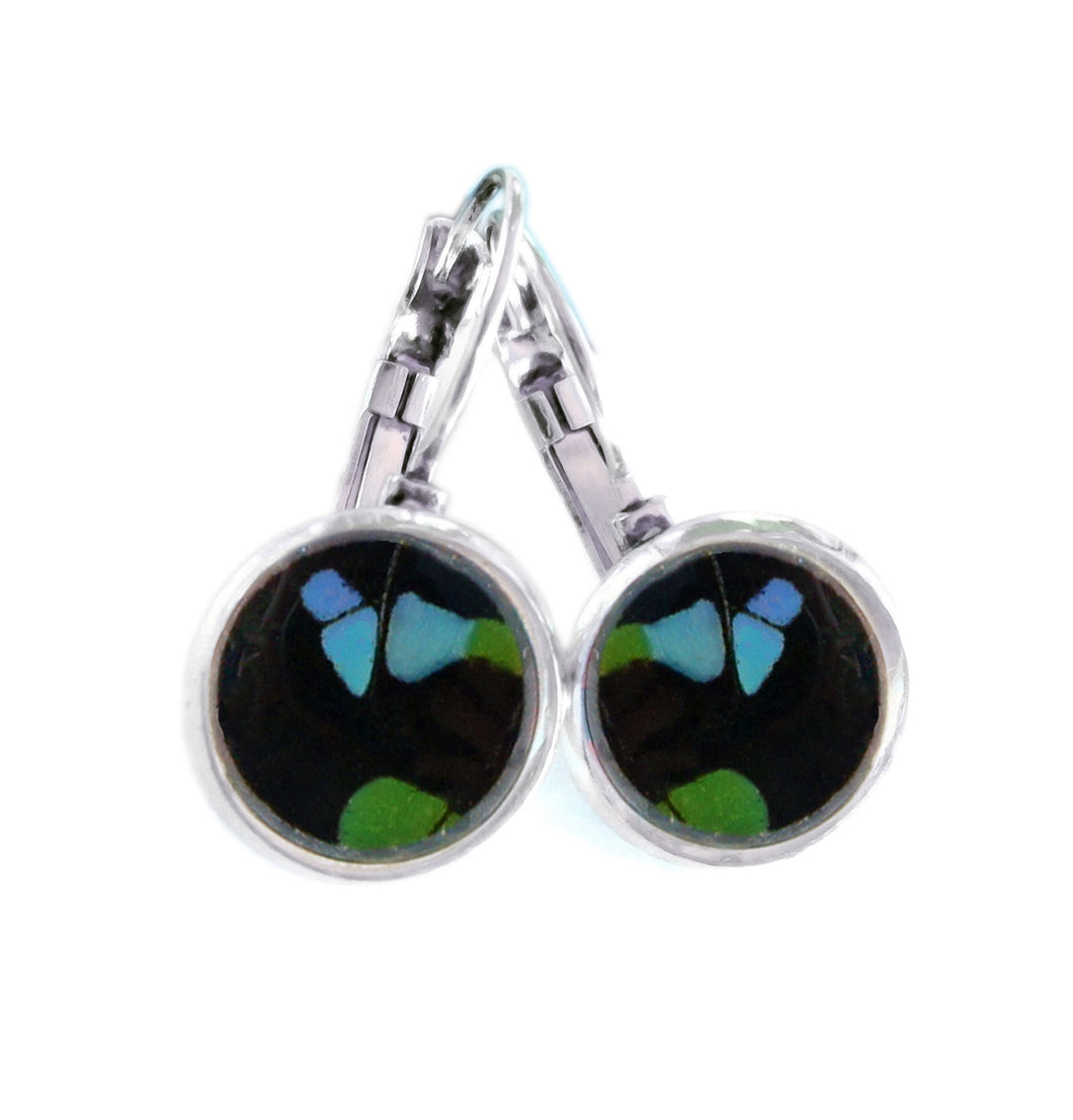 Real Butterfly Wing Post Earrings - Graphium Weiskei Hindwing