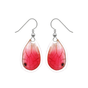 Real Butterfly Wing Earrings - Blushing Phantom