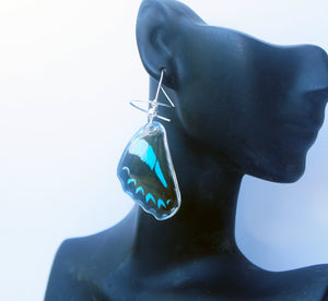 Real Butterfly Wing Sterling Silver Earrings - Graphium Milon Hindwing