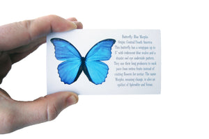 Real Butterfly Wing Ring - Blue Morpho Marquis