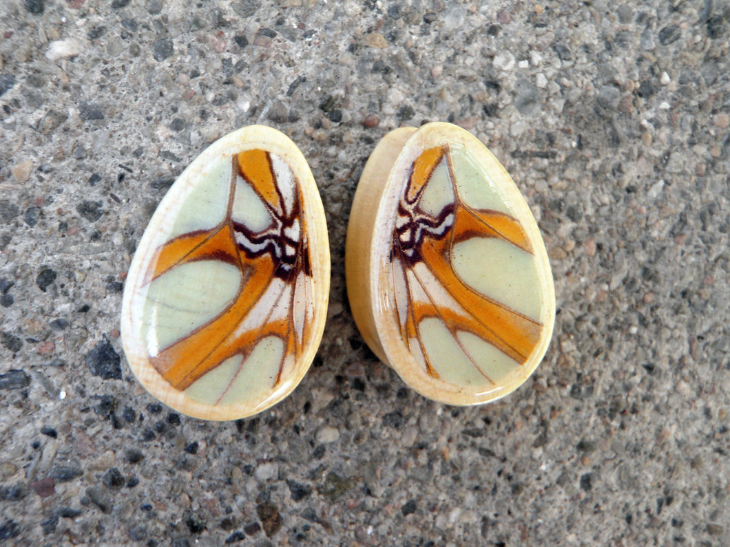 Real Butterfly Wing Teardrop Plugs - Victorina Stelenes - Crocodile Wood - Body Jewelry, Gauges, Teardrop Plugs
