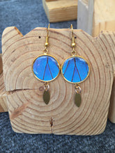 Load image into Gallery viewer, Blue Morpho Gold-Plated Pendant Butterfly Earrings