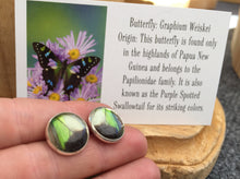 Load image into Gallery viewer, Electric Green Butterfly Wing Post Earrings - Graphium Weiskei Green